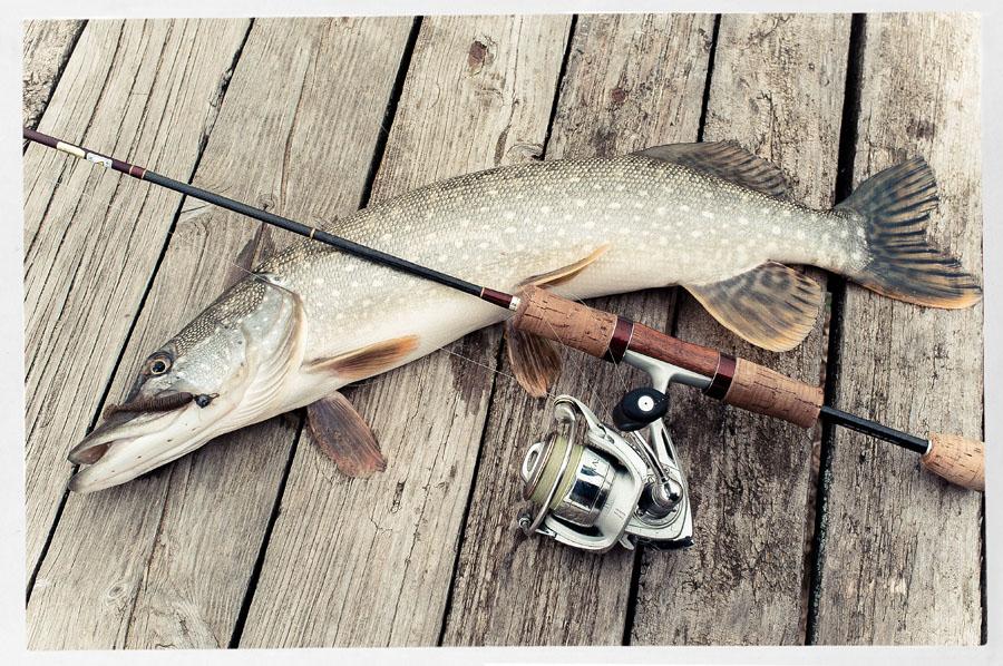 видео о ловле рыбы на микровертушки и микроколебалки
